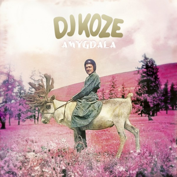 DJKOZE_Amygdala_cover